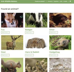 Irish Wildlife Matters